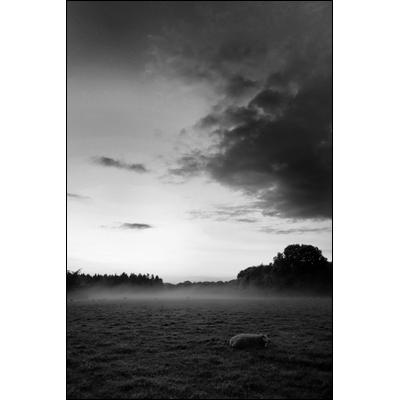 rob_kleinjans_fotografie_natuur_19