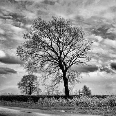 rob_kleinjans_fotografie_natuur_20