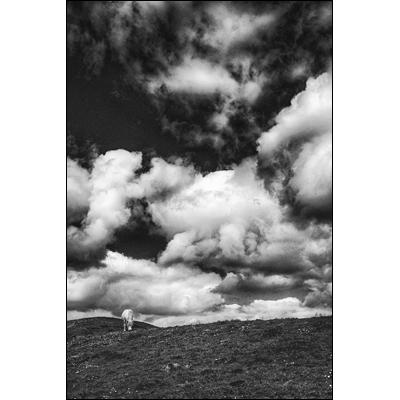rob_kleinjans_fotografie_natuur_22